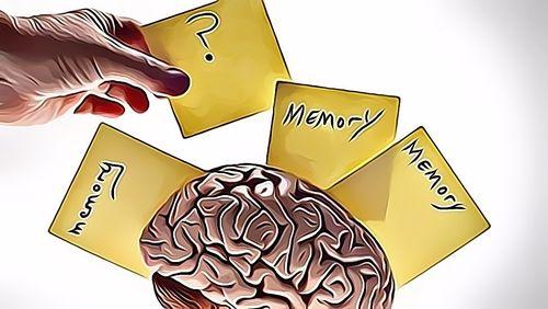 Obat Amnesia Resep Herbal HNI HPAI
