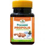 Katalog Produk HNI Procumin Propolis