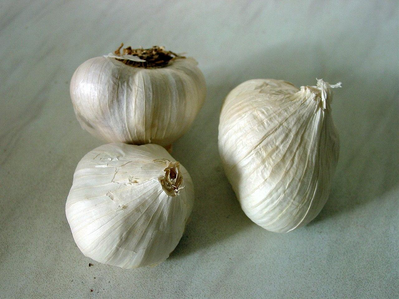 Mengenal Bawang Putih, Manfaat dan Kandungan